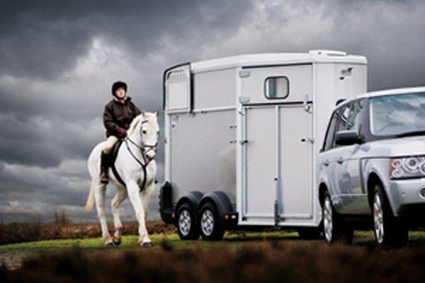 IFOR Williams HB511 remorque pour chevaux