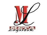 Meta-Logistik